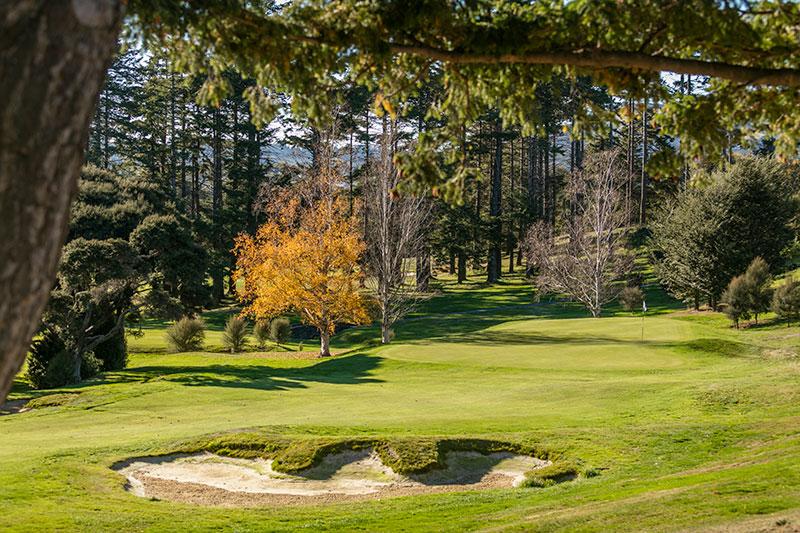 Otago Golf Club looking towards the 17th Green (Supplied)